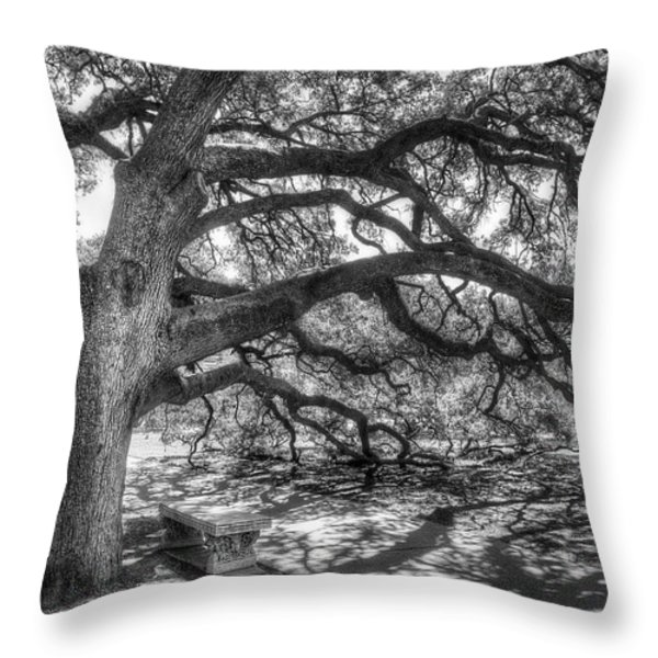 The Century Oak Throw Pillow by Scott Norris