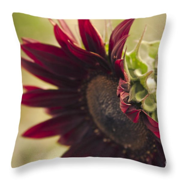 The Child of Nature Throw Pillow by Sharon Mau
