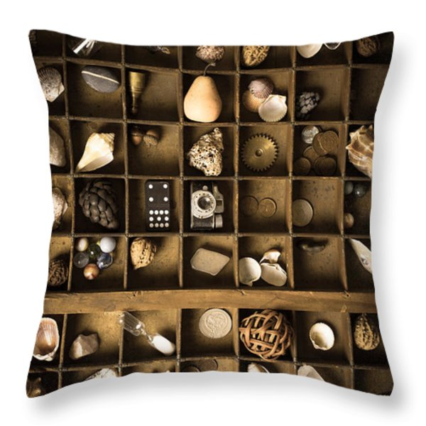 The Collection Throw Pillow by Edward Fielding