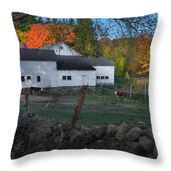 The Connecticut Outback Throw Pillow by Bill  Wakeley