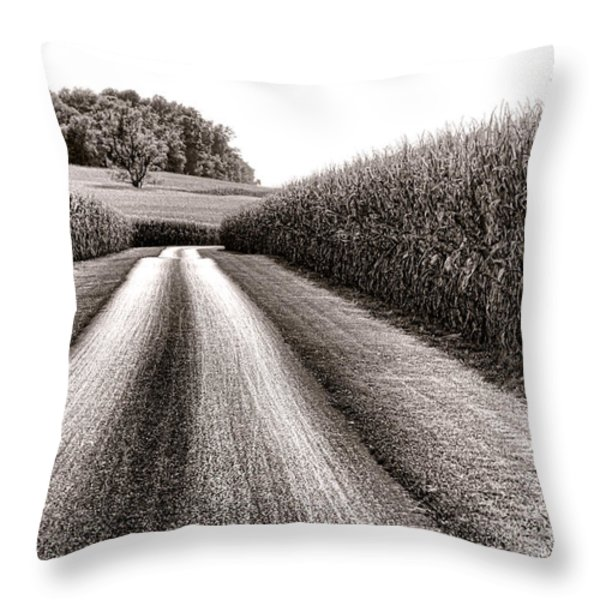 The Corn Road Throw Pillow by Olivier Le Queinec