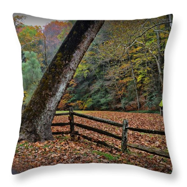 The Country Road Throw Pillow by Paul Ward