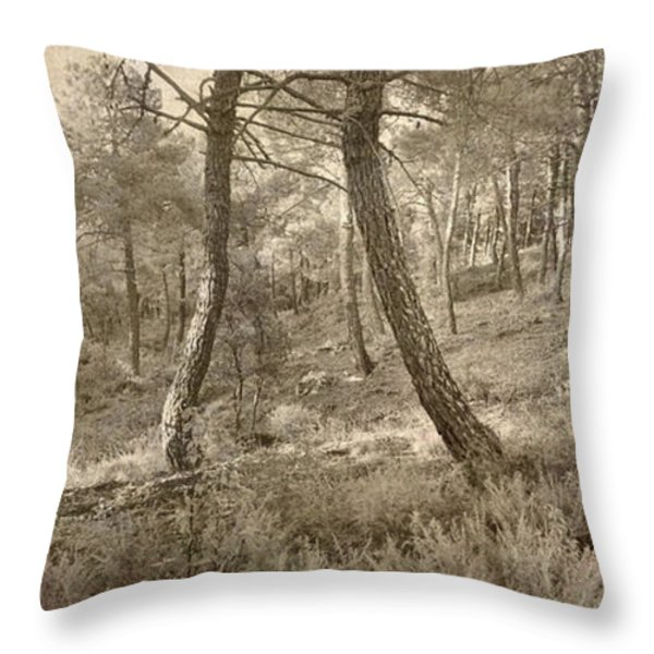 The Dance Of The Forest Throw Pillow by Guido Montanes Castillo
