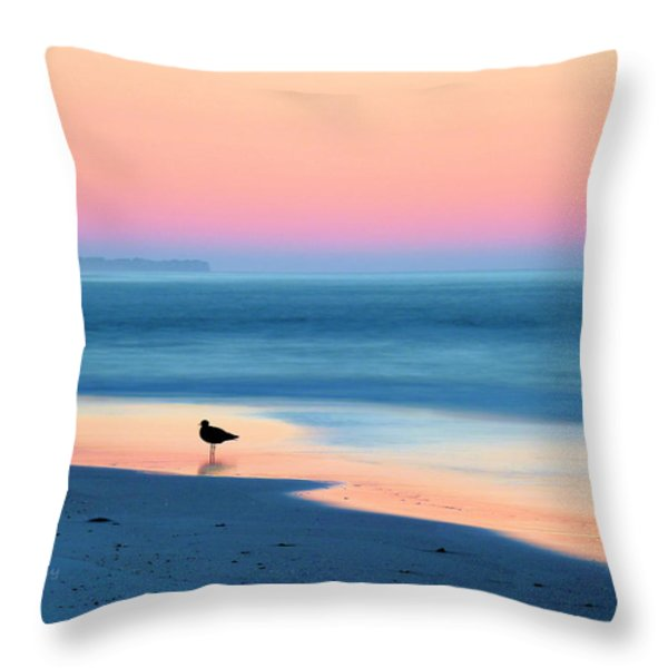 The Day Begins Throw Pillow by JC Findley