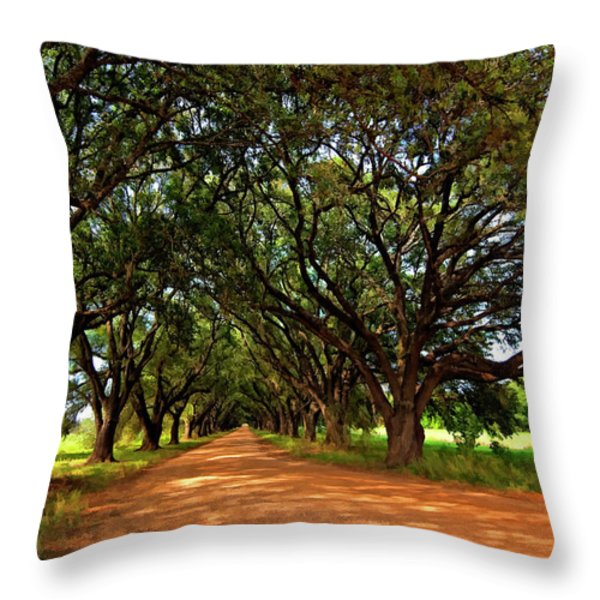 The Deep South Throw Pillow by Steve Harrington