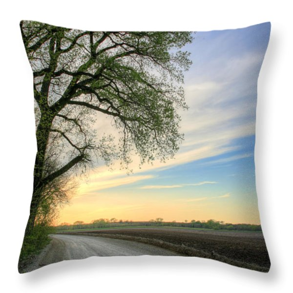 The Dirt Road Throw Pillow by JC Findley