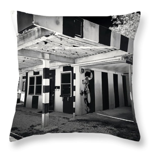 The Dog House Throw Pillow by John Rizzuto