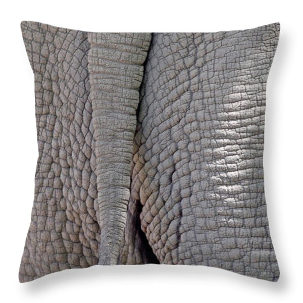 The end is near Throw Pillow by Alan Look