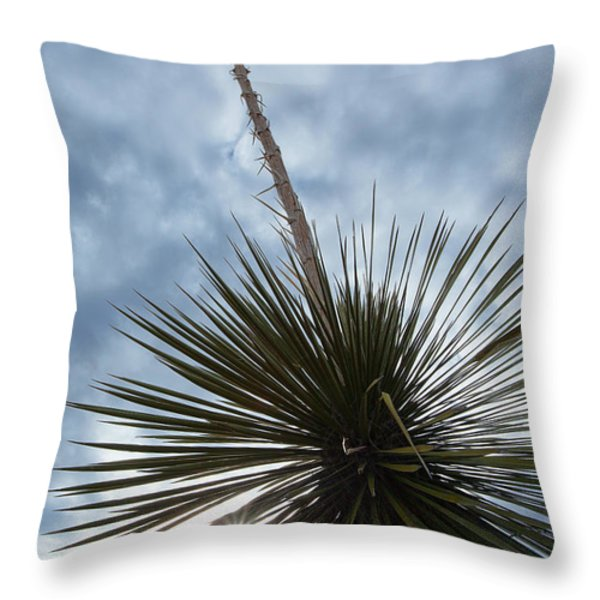 The Evening Star Throw Pillow by Jim Garrison