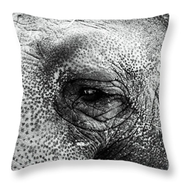 The Eye that Never Forgets Throw Pillow by John Rizzuto