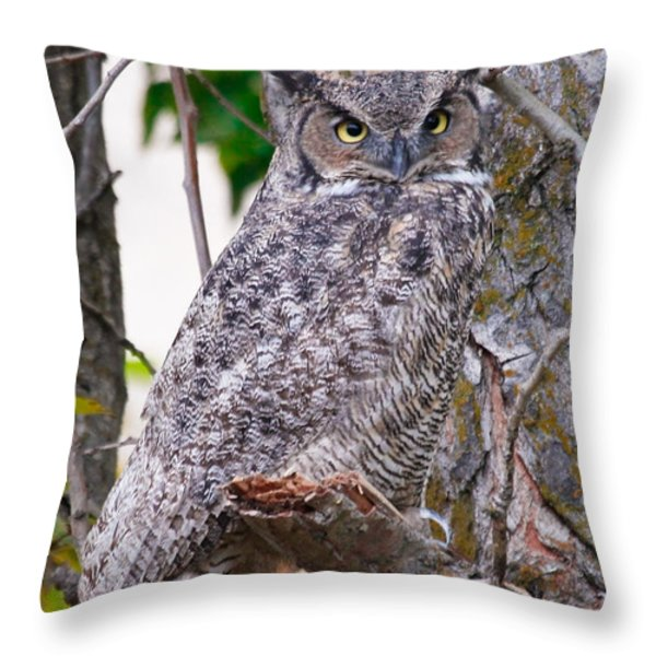 The Eyes Have It Throw Pillow by Athena Mckinzie