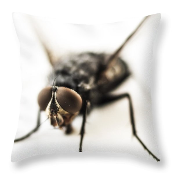 The Fly Throw Pillow by Marco Oliveira