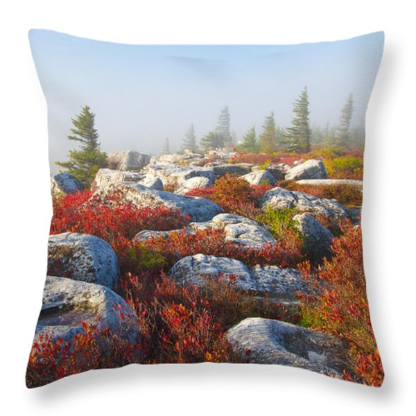 The Fog Clears At Dolly Sods Throw Pillow by Bill Swindaman
