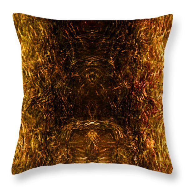 The Forbidden Door Throw Pillow by James Barnes