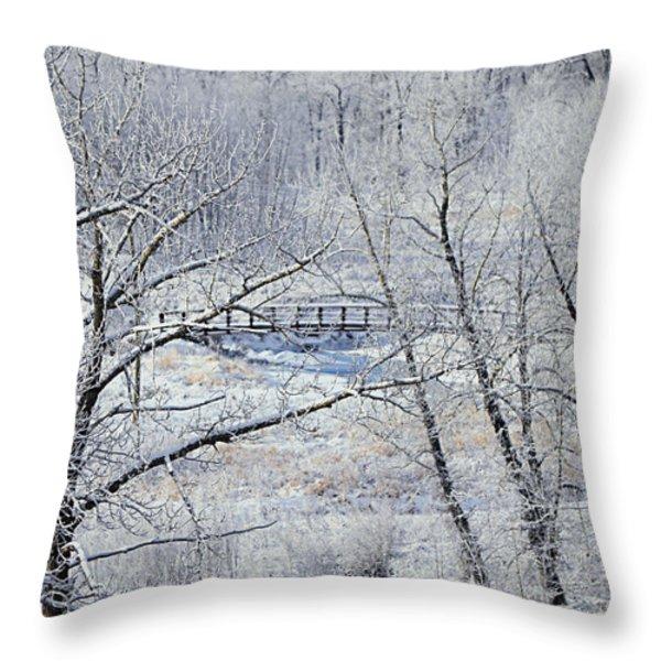 The Frozen Bridge Throw Pillow by Maria Angelica Maira