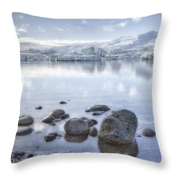 The Frozen World Throw Pillow by Evelina Kremsdorf