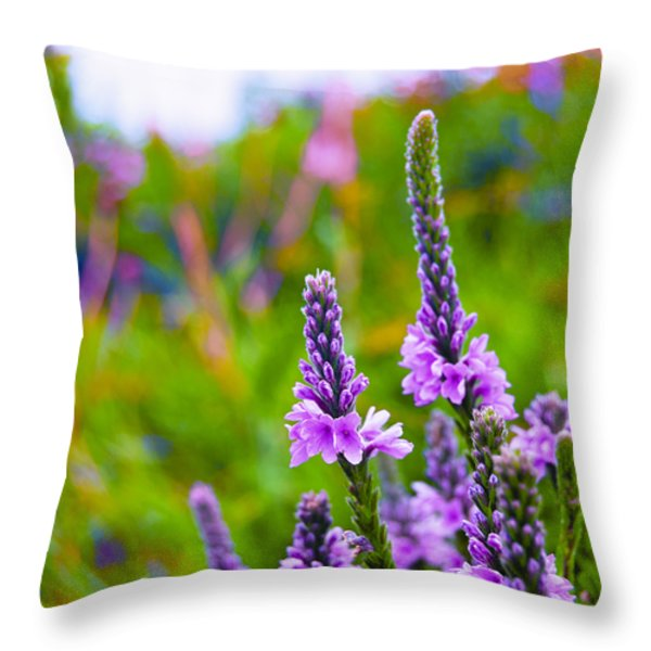 The Garden Palette Throw Pillow by Christi Kraft