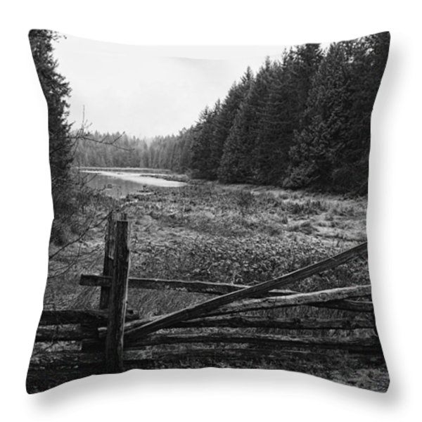 The Gate In Black And White Throw Pillow by Lawrence Christopher