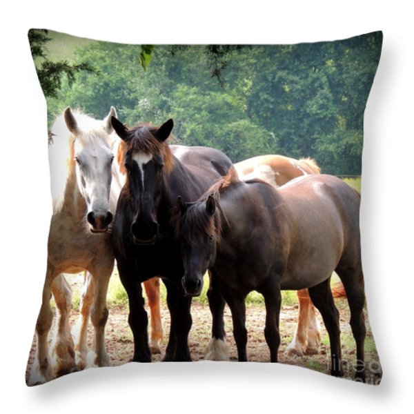 The Girls Throw Pillow by Rabiah Seminole