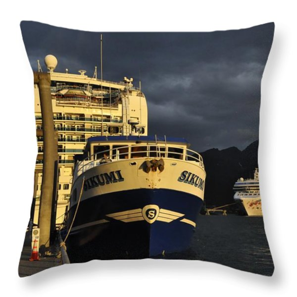 The Golden Hour Throw Pillow by Cathy Mahnke