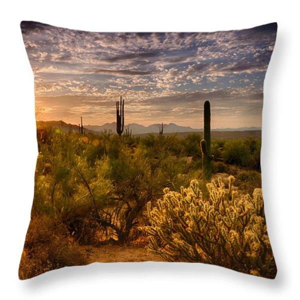 The Golden Southwest  Throw Pillow by Saija  Lehtonen