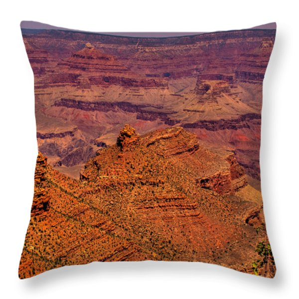 The Grand Canyon Iv Throw Pillow by David Patterson