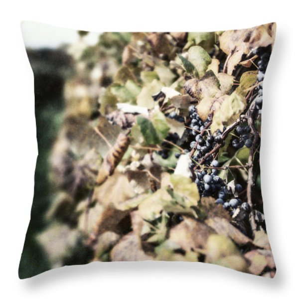 The Grapevines Throw Pillow by Lisa Russo