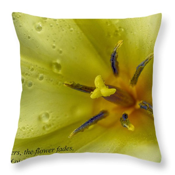 The Grass Withers the Flower Fades Throw Pillow by Thomas R Fletcher