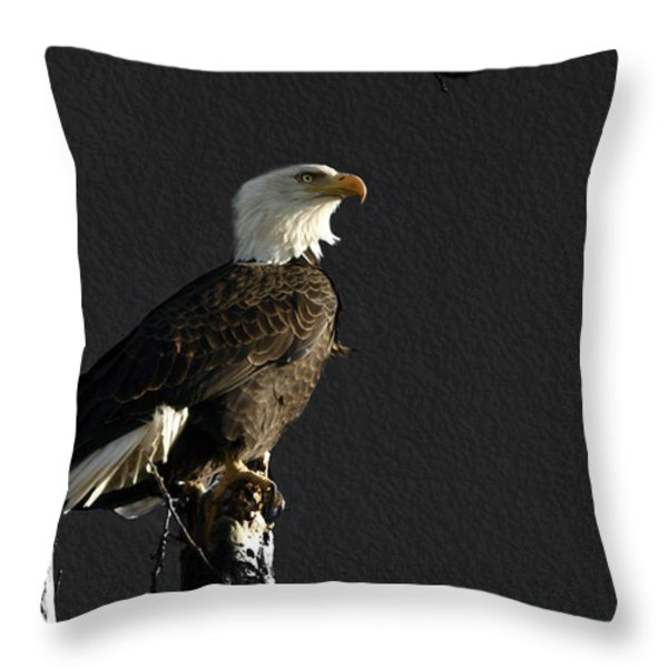 The Great Bald Eagle 1  Throw Pillow by Thomas Young