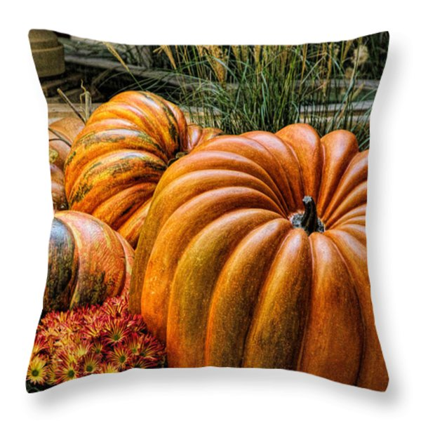 The Great Pumpkin Throw Pillow by Tammy Espino