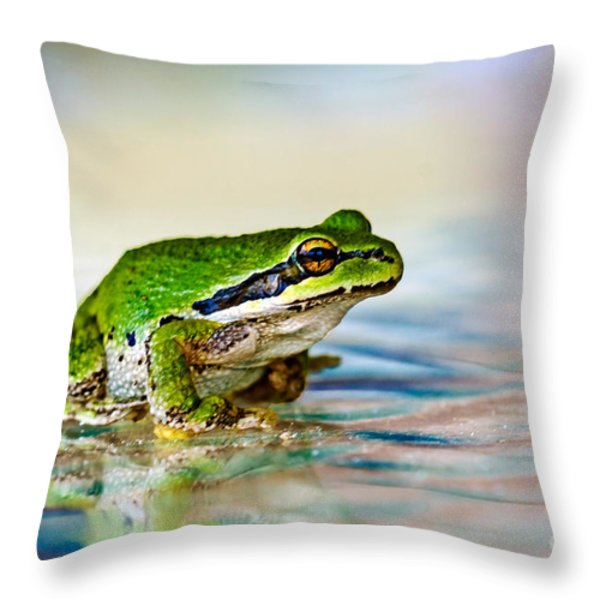 The Green Frog Throw Pillow by Robert Bales