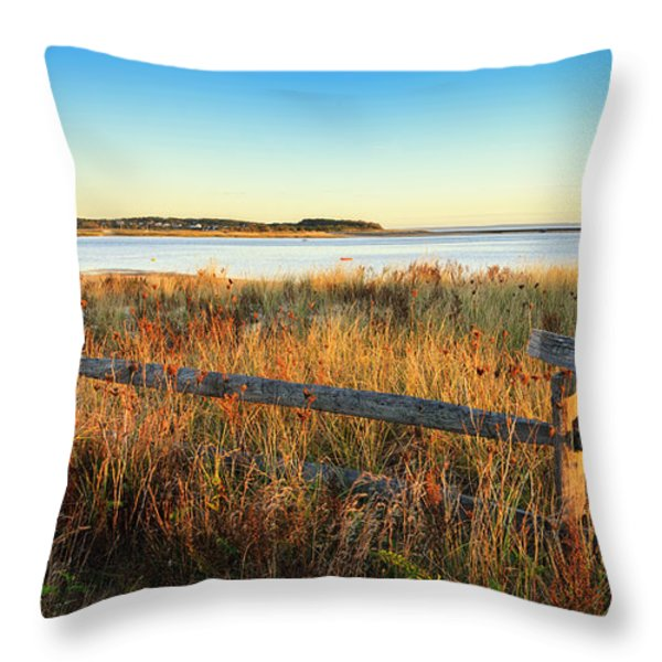 The Harbor Throw Pillow by Bill  Wakeley