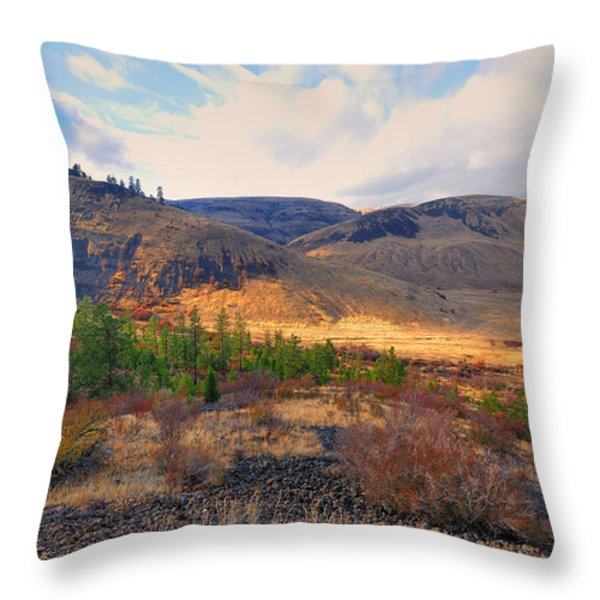 The Hills Throw Pillow by Gary Silverstein