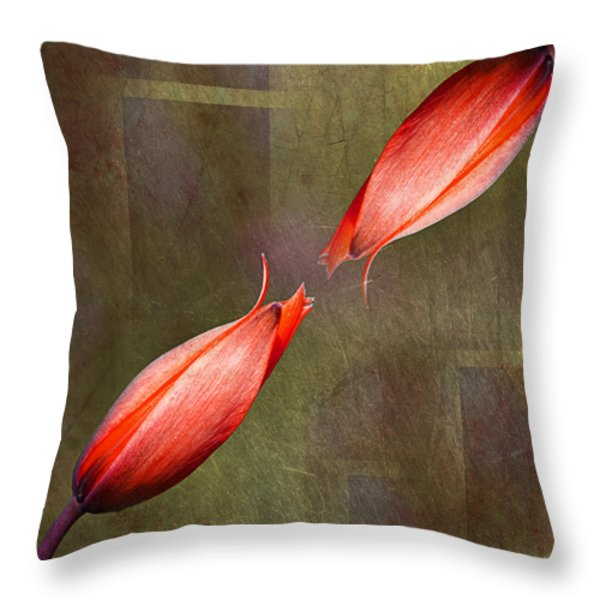 The Kiss Throw Pillow by Claudia Moeckel