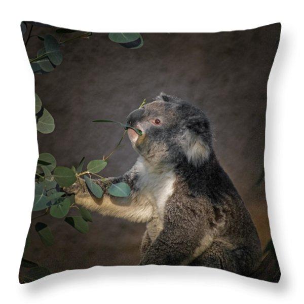 The Koala Throw Pillow by Ernie Echols