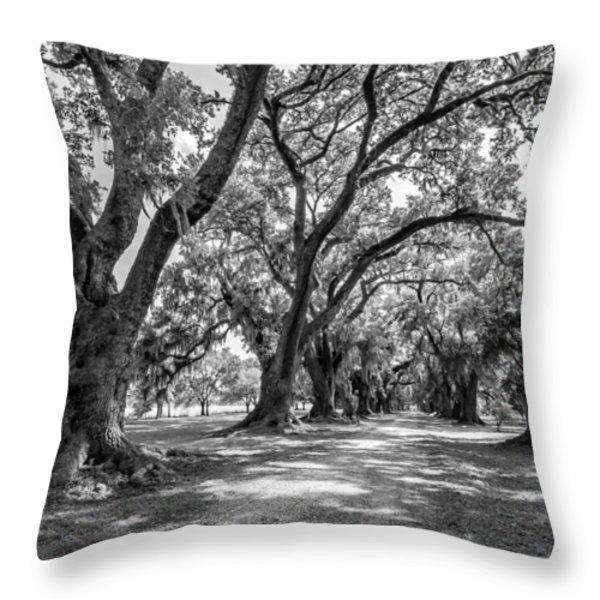 The Lane bw Throw Pillow by Steve Harrington