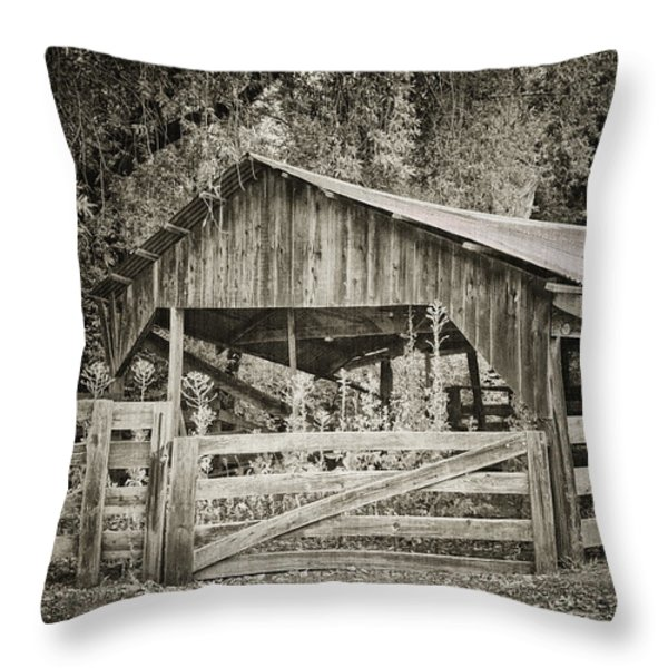 The Last Barn Throw Pillow by Joan Carroll