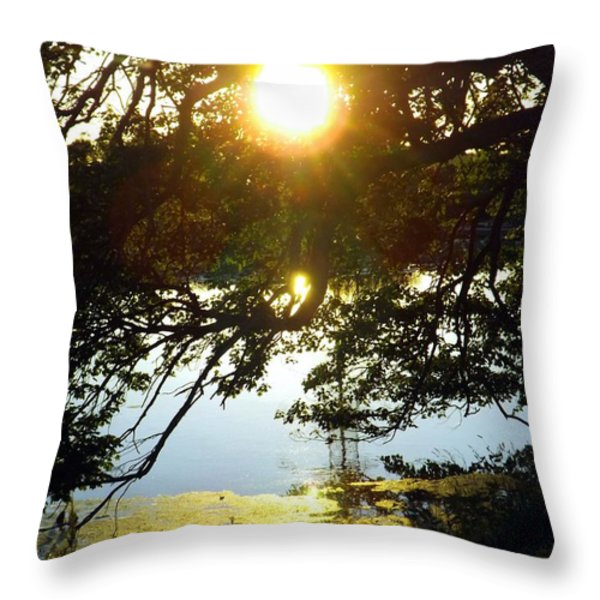 The Last Dance Throw Pillow by Robyn King