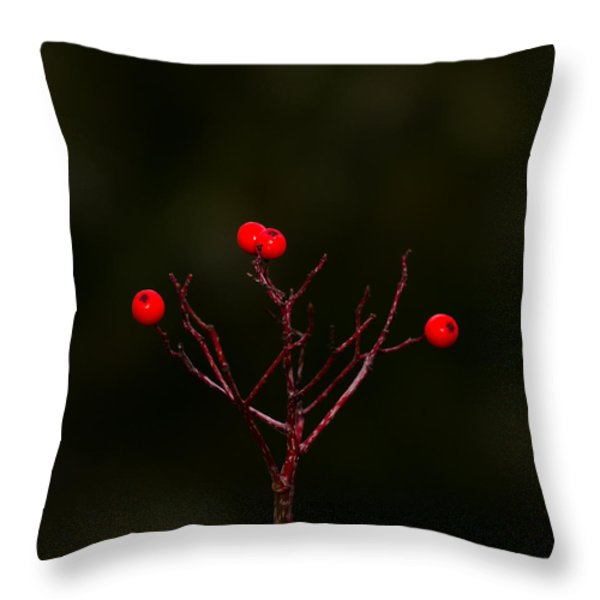 The Last Of Ashberries Throw Pillow by Alexander Senin