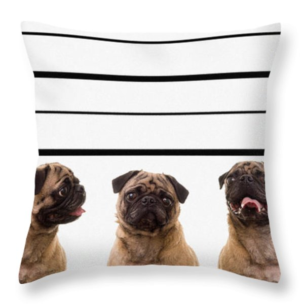 The Line Up Throw Pillow by Edward Fielding