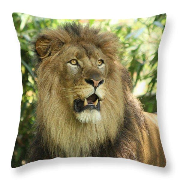 The Lion King Throw Pillow by Kim Hojnacki