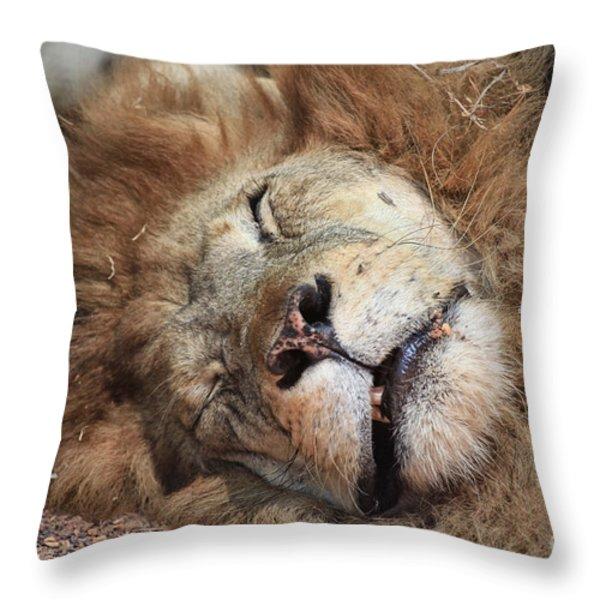 The Lion Sleeps Tonight V4 Throw Pillow by Douglas Barnard