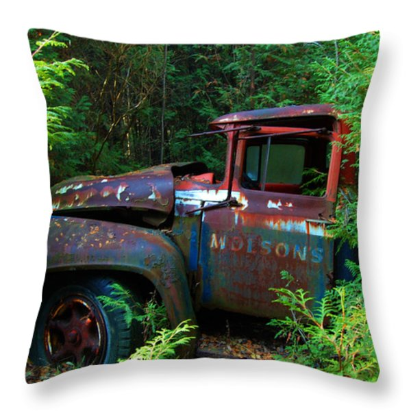 The Lost Delivery Throw Pillow by Ron Haist