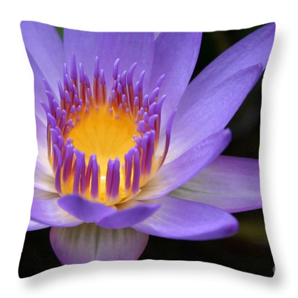 The Lotus Flower - Tropical Flowers Of Hawaii - Nymphaea Stellata Throw Pillow by Sharon Mau