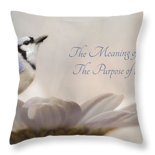 The Meaning of Life Throw Pillow by Lori Deiter
