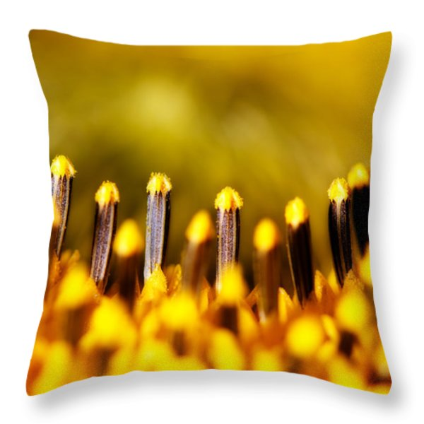 the Miracle of a Single Flower Throw Pillow by Lisa Knechtel
