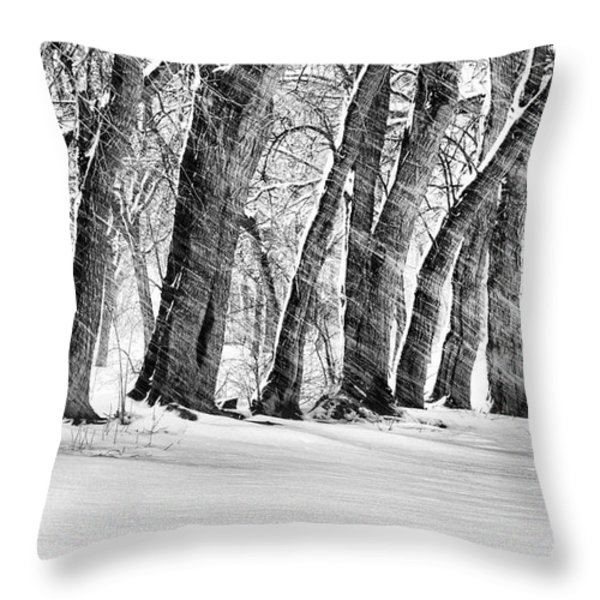 The Noreaster Bw Throw Pillow by JC Findley