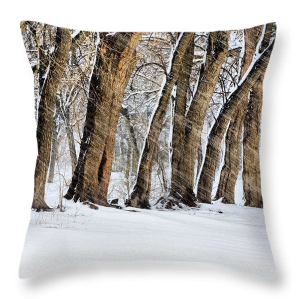 The Noreaster Throw Pillow by JC Findley