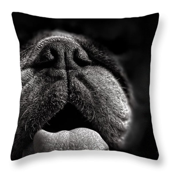The Nose Knows Throw Pillow by Bob Orsillo