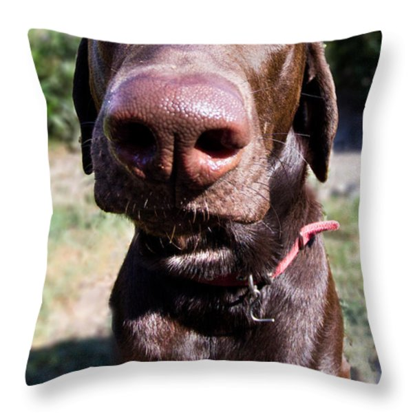 The Nose Knows Throw Pillow by Roger Wedegis